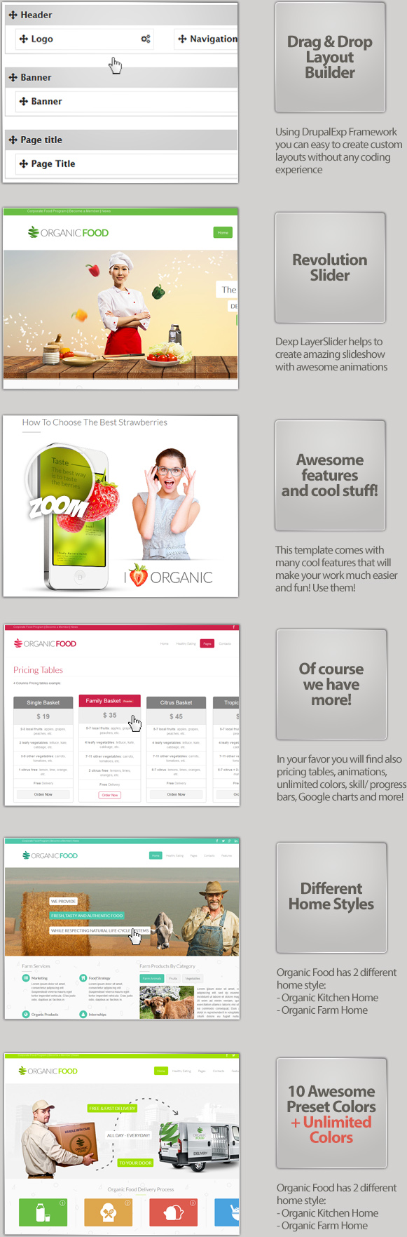 Organic Food - Responsive Drupal Theme